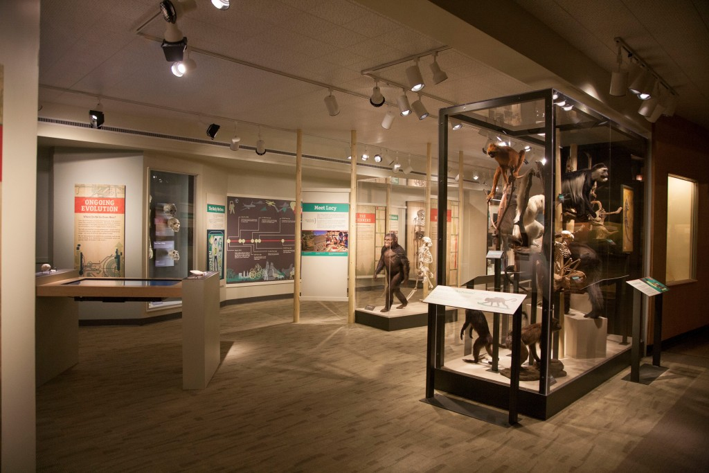 CMNH exhibit image
